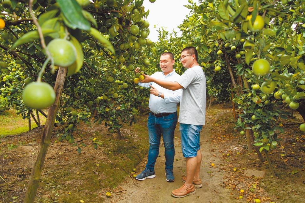 大苑子創辦人邱瑞堂(左)積極親自拜訪果農,選擇良好食材。(大苑子提供)