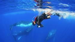 《男人與他的海》人氣旺 集資創紀錄破年度最高額