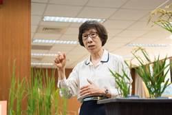 全球首創 中研院改良水稻品種抗糧食危機