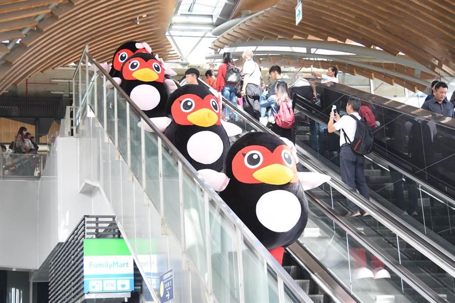 6隻紅面萌鴨從花蓮車站手扶梯緩緩下樓,讓一旁大小朋友直喊「超可愛」。(王昱凱攝)