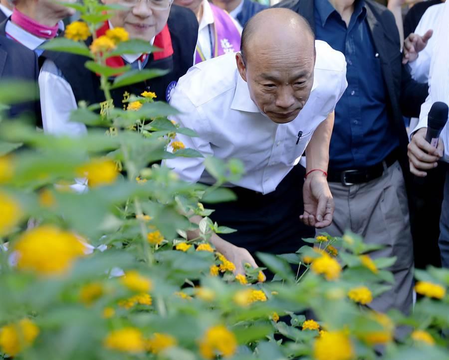 國民黨總統參選人韓國瑜的新北市傾聽之旅16日來到新北市的莊敬高職,在應邀參觀該校實習農場花園的時候,他彎腰俯身聞了聞花的香味。(季志翔攝)