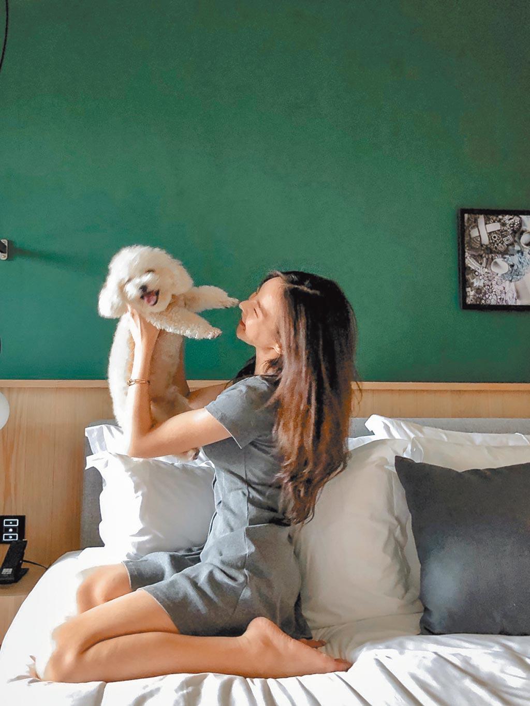 金普頓大安酒店秉持著品牌推行的「寵物樂園Pet Friendly」,至今已有狗、貓、鸚鵡入住過。(金普頓大安酒店提供)
