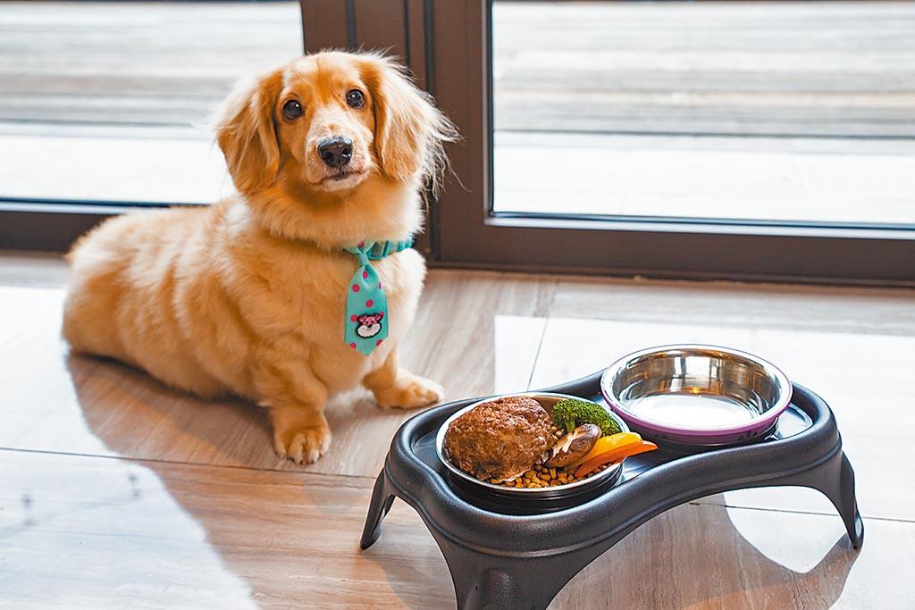 台北北投雅樂軒酒店內的「聚聚樂」餐廳提供3種口味ARF寵物套餐。(台北北投雅樂軒酒店提供)