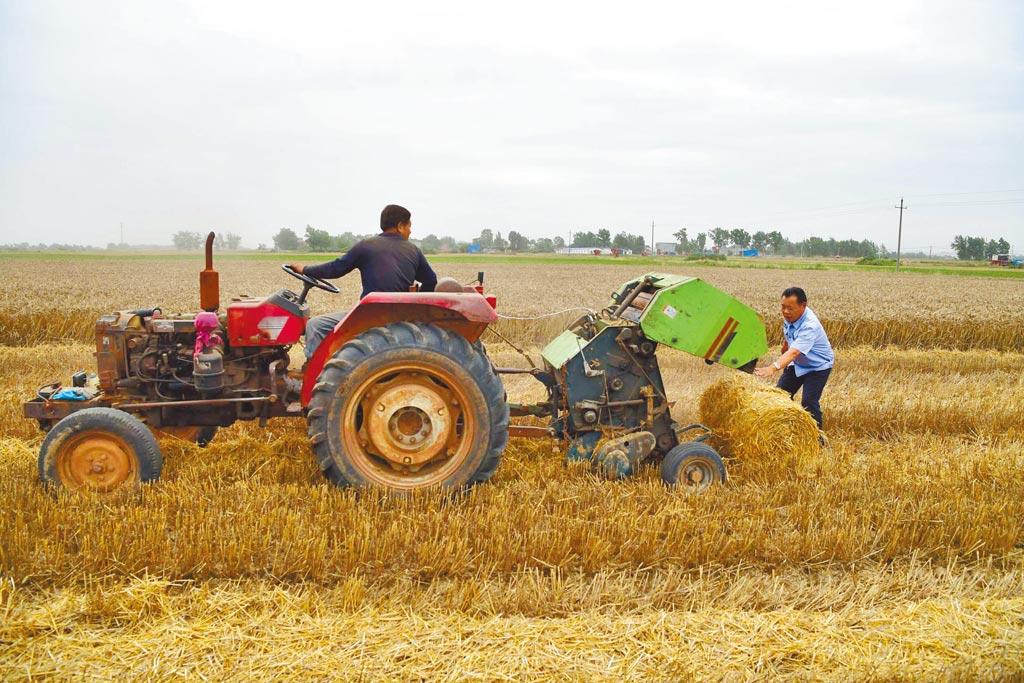 1979年的四中全會保障大陸農民經營自主權。(新華社資料照片)