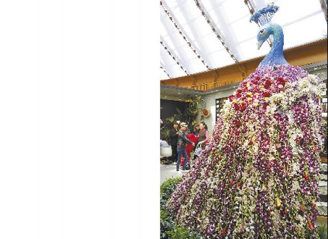 民眾在北京世園會中國館拍照留念。(中新社資料照片)