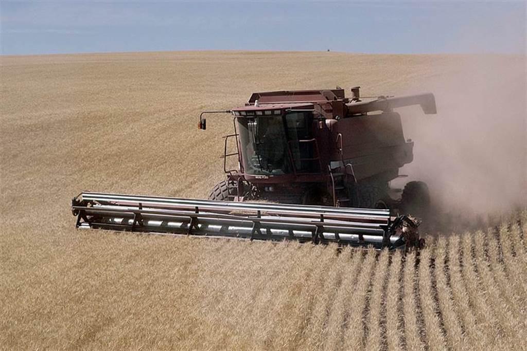 貿易戰讓美國農民深受其害。(美聯社資料照片)