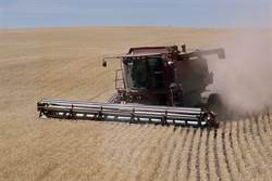 貿易戰讓美農民崩潰 農場慘湧破產潮