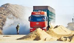 吃40萬噸草 能吐2 .8億度電