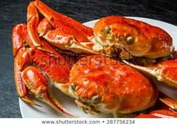 2019年全球最貴螃蟹被吃下肚 去年冠軍幸運成水族館嬌客