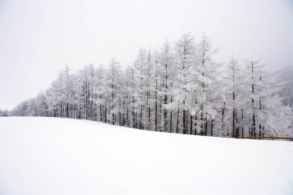 冬季戀歌、師任堂、鬼怪等都在江原道拍攝。圖:業者提供
