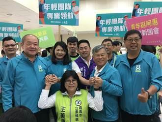 綠營王美惠稱300萬參選立委 「平民」參政