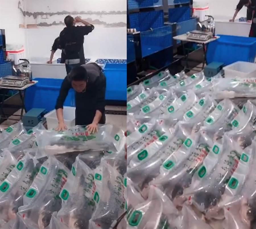影片中可見活魚被裝進充滿空氣的袋中,在氣囊中張嘴及擺動魚鰭(圖翻攝自/微博/黃剛)