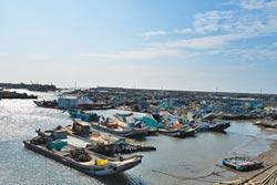 張麗善指示 台子村漁港加高延伸防波堤