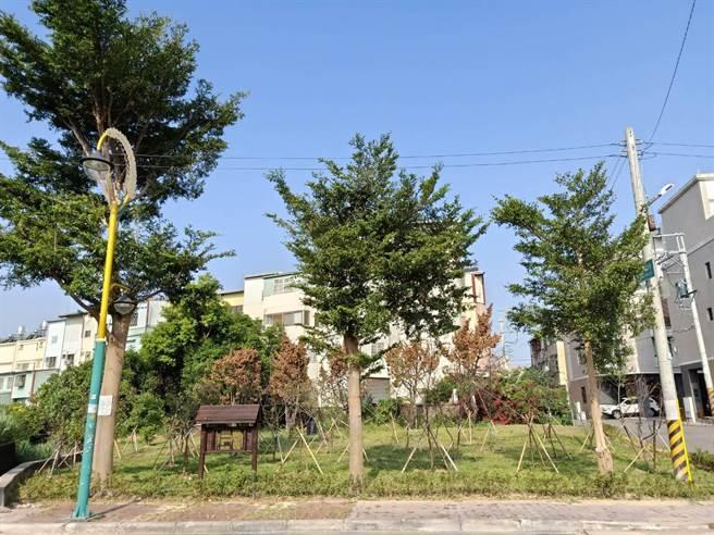 大雅第七公墓遷葬後植栽美化。(台中市政府提供/陳世宗台中傳真)