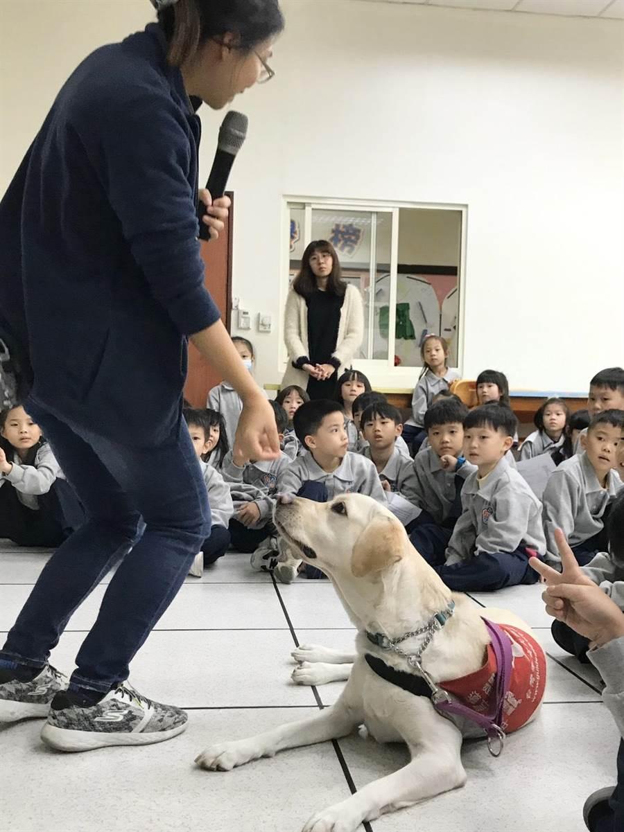 基隆市二信國小部結合台灣導盲協會舉辦「英語課程導盲犬宣導活動」,透過孩子喜歡親近的動物,配合英語的學習,用全英語課程來認識導盲犬。(翻攝照片/吳康瑋基隆報導)