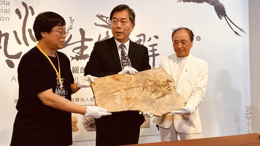 科博館將推出「熱河生物群特展」,展品開箱儀式,由「顧氏小盜龍」化石搶先曝光。(陳淑芬攝)