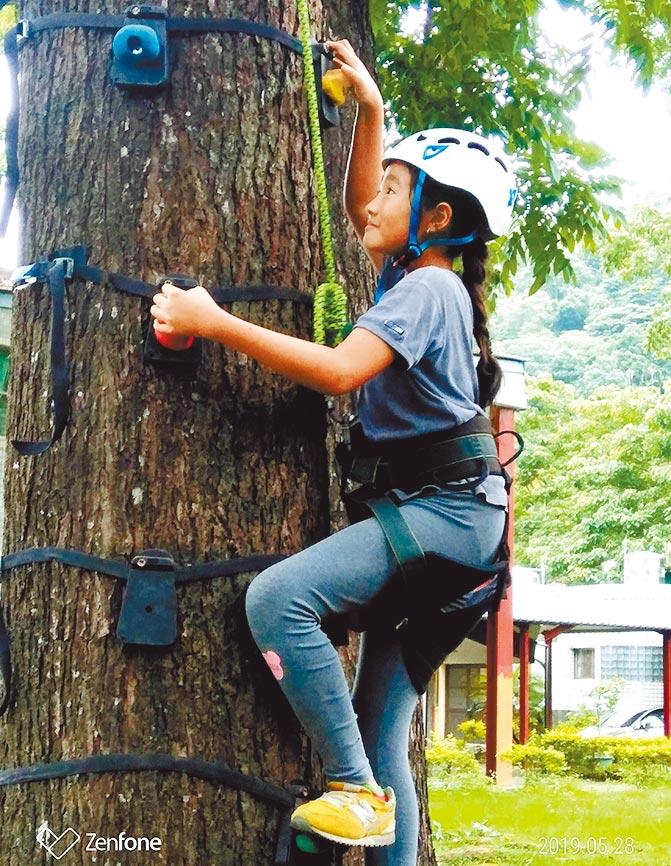 長福國小的低空探索教育,讓學生透過走繩或攀爬樹木,體驗離開地面的感受。(長福提供/楊樹煌南投傳真)
