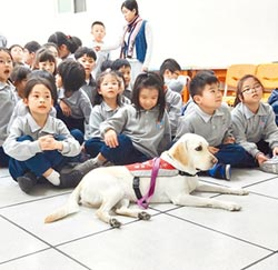 導盲犬當老師 多元英語教學生活化