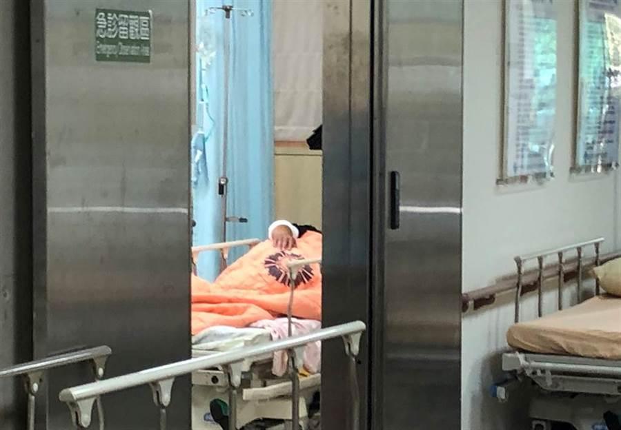 南投林管處高姓巡山員山區在山區發生開放性骨折,被誤傳為遭山老鼠槍擊,目前傷者仍住院,但經查明是巡山員自行帶槍山上自傷,林管處為此表示遺憾。(楊樹煌攝)