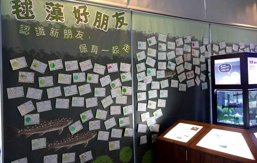 毬藻展示場旁布置許多毬藻著色卡,是臺灣的大小朋友給予毬藻熱烈的歡迎與祝福。(台北市立動物園提供)