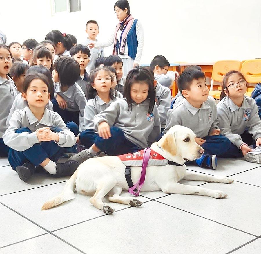 二信國小部邀請講師、視障朋友及導盲犬到校分享與體驗。(二信高中提供/吳康瑋基隆傳真)