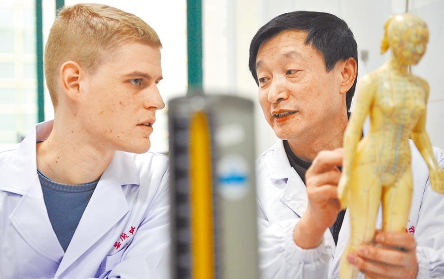 一名法國留學生在安徽一中醫學院學習針灸知識。(新華社資料照片)