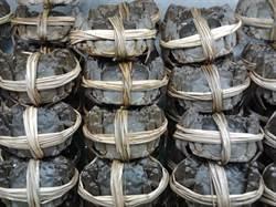 偷載15噸含毒大閘蟹  林姓管理人遭判4個月徒刑