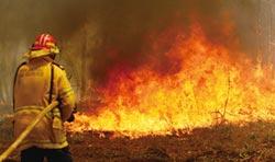 澳洲陷入野火危機