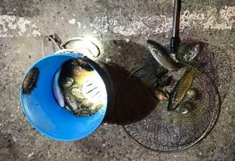 民眾闖台東富山保育區打魚 海巡現場活逮