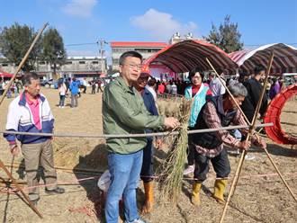 外埔無毒米食節 展示傳統倒吊曬稻法