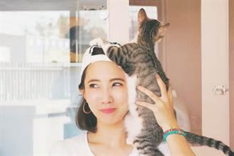 她跟謝忻同台狂提阿翔...漸漸變臉尷尬了