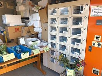 用自動販賣機賣菜