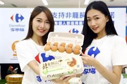 亞洲第一支!家樂福自有品牌「非籠飼」雞蛋上市