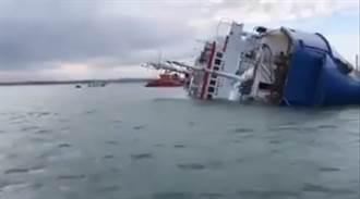 羅馬尼亞貨輪黑海翻覆 上萬羊咩咩恐遭滅頂