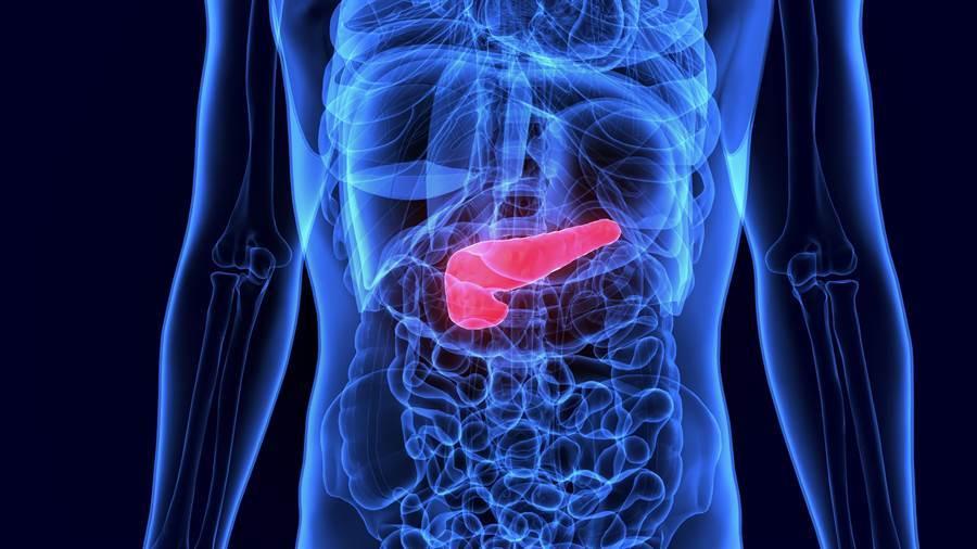 「癌王」胰臟癌致死率高 醫曝6症狀要小心。(圖/達志影像)