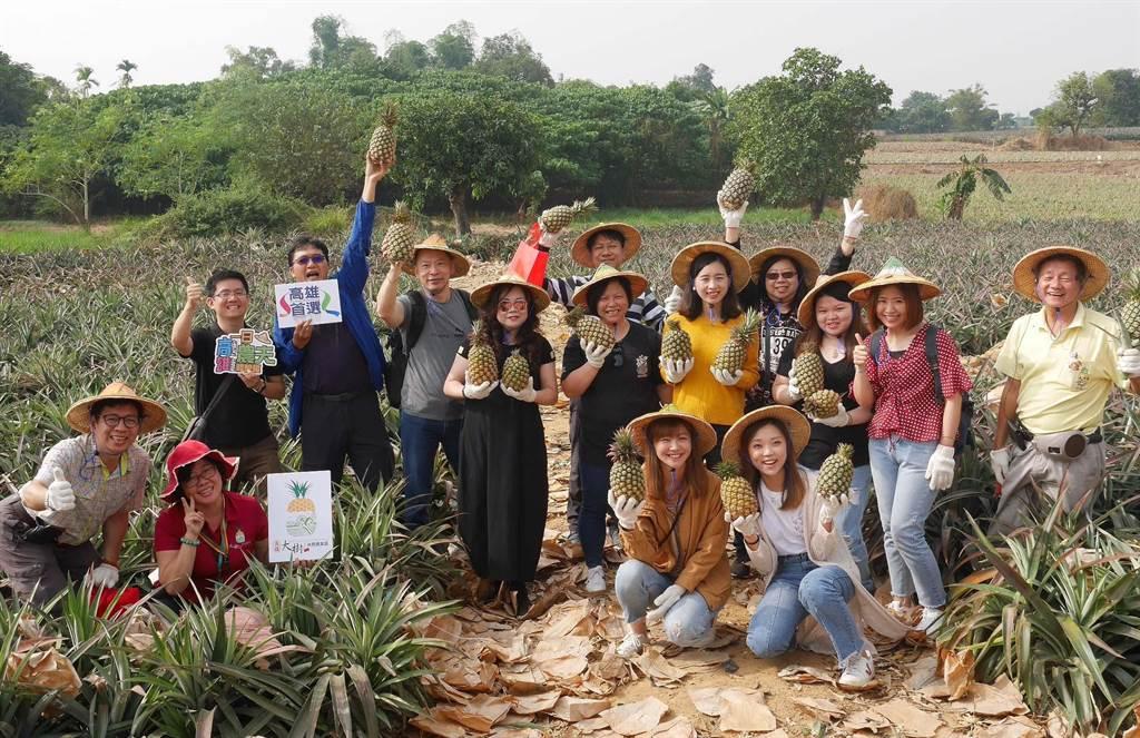 港澳旅行業者組團於27日赴高雄大樹區採摘鳳梨體驗一日農夫生活。(林雅惠攝)