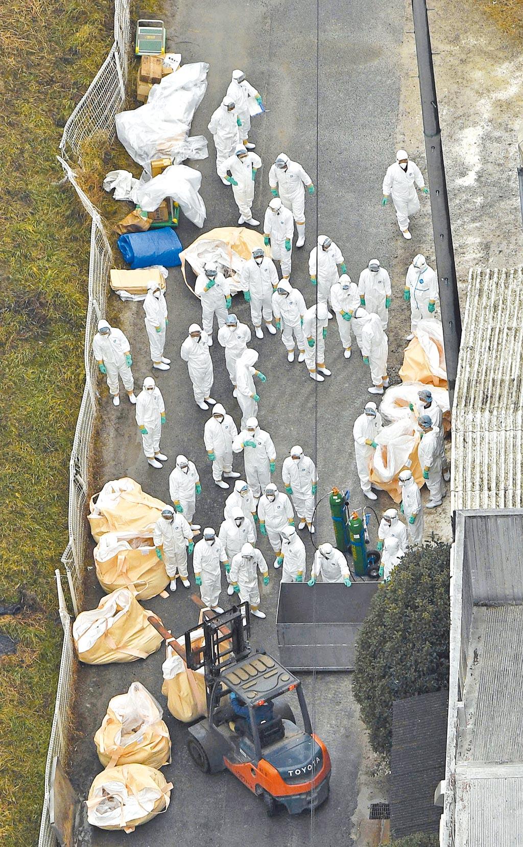 日本豬瘟疫情延燒,工人在養豬場進行隔離。(路透)
