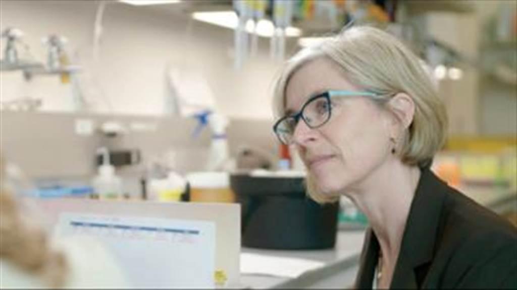 片中完整闡述基因編輯的發展始末。(新北市政府文化局提供/王寶兒台北傳真)