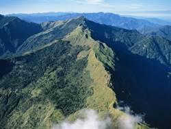 森林生態系服務價值 農委會估每年每公頃40萬