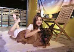 夏宇童推新歌MV不見男主角 卻找來毛小孩「5熊」助陣