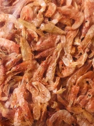 日靜岡縣餐廳用台灣產的櫻花蝦冒充駿河灣產