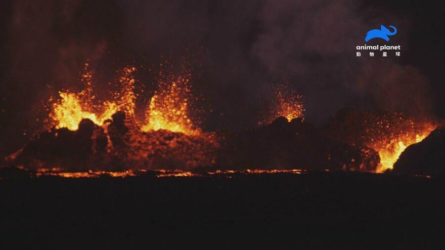 費南迪納島火山運動活躍,有「人間地獄」之稱號。(動物星球頻道 提供)
