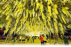 耶誕點燈 屏東公園吹童話風