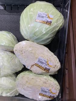 11月又超種  高麗菜都會價出現每公斤3.4元