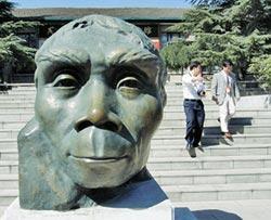 北京猿人頭蓋骨 改寫人類史