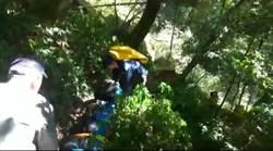 女遊阿里山「千人洞」跌落邊坡受傷送醫