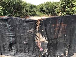 太陽能業者不再插旗直接拆工寮 小農苦嘆「他們沒違法,但農夫無田種對嗎?」