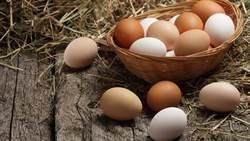 蛋殼顏色深更營養?專家答案驚人
