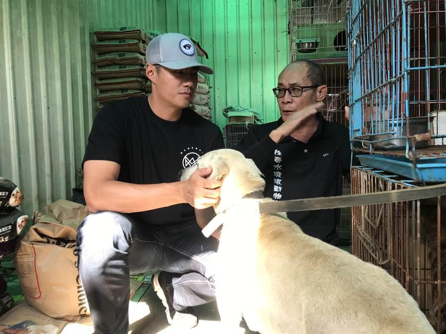 陳偉殷(左)前進台南徐春水流浪動物之家,在園長徐春水(右)的介紹下,了解「TNR計畫」。(鄧心瑜攝)