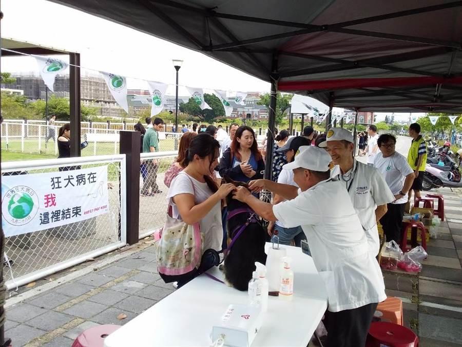 中市12月狂犬疫苗注射開跑,將舉辦9場次「犬貓狂犬病疫苗及寵物晶片巡迴注射活動」。(台中市政府動保處提供/陳世宗台中傳真)